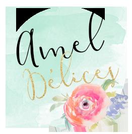 Logo Amel Délices